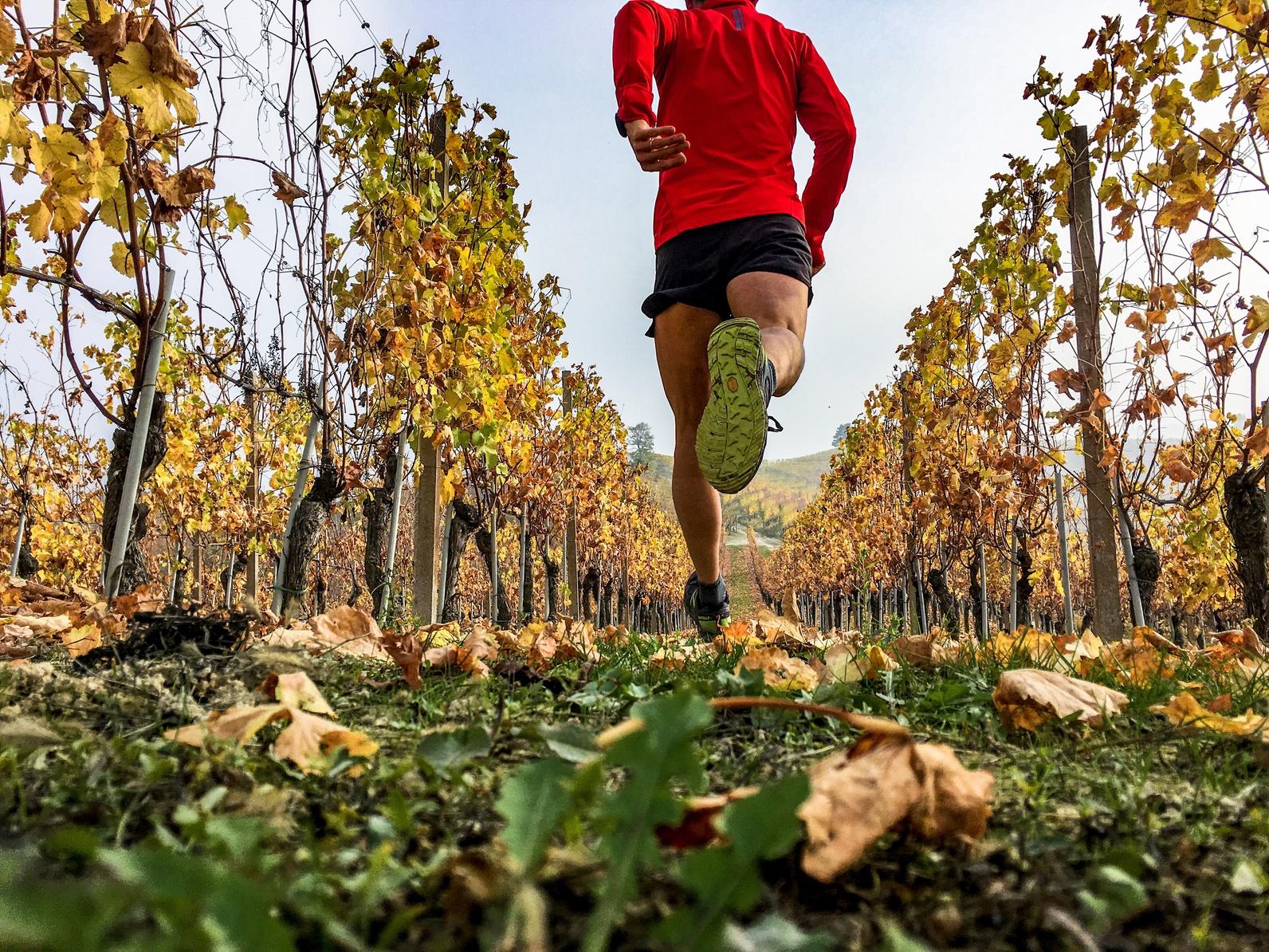 184682e0 Jak zacząć biegać po górach?